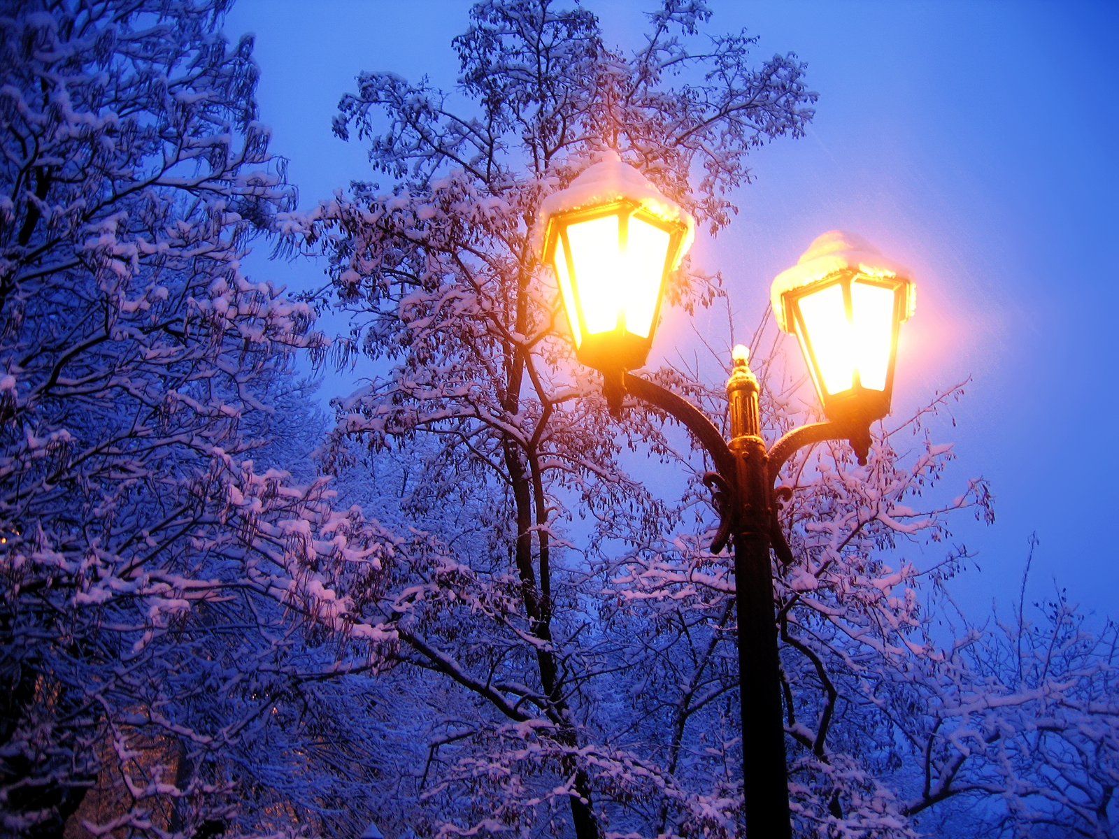 Animierte Weihnachtsbilder.City Lights Winter Snow Wallpaper Rules Are Not Necessarily Sacred
