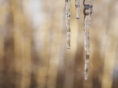 winter, ice, photography