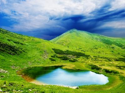 landscape, spring, green